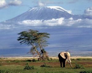 Tanzania_kalimandgaro