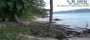 Andamanskie-ostrova_VU4K_QSL