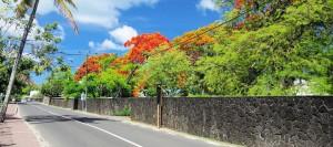 Mauritius_3B8-M0CRX_DX-News