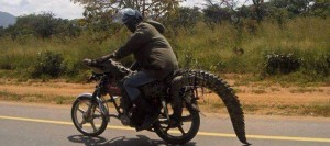 Tanzania_5H9GB