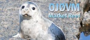 OJØVM – Market Reef